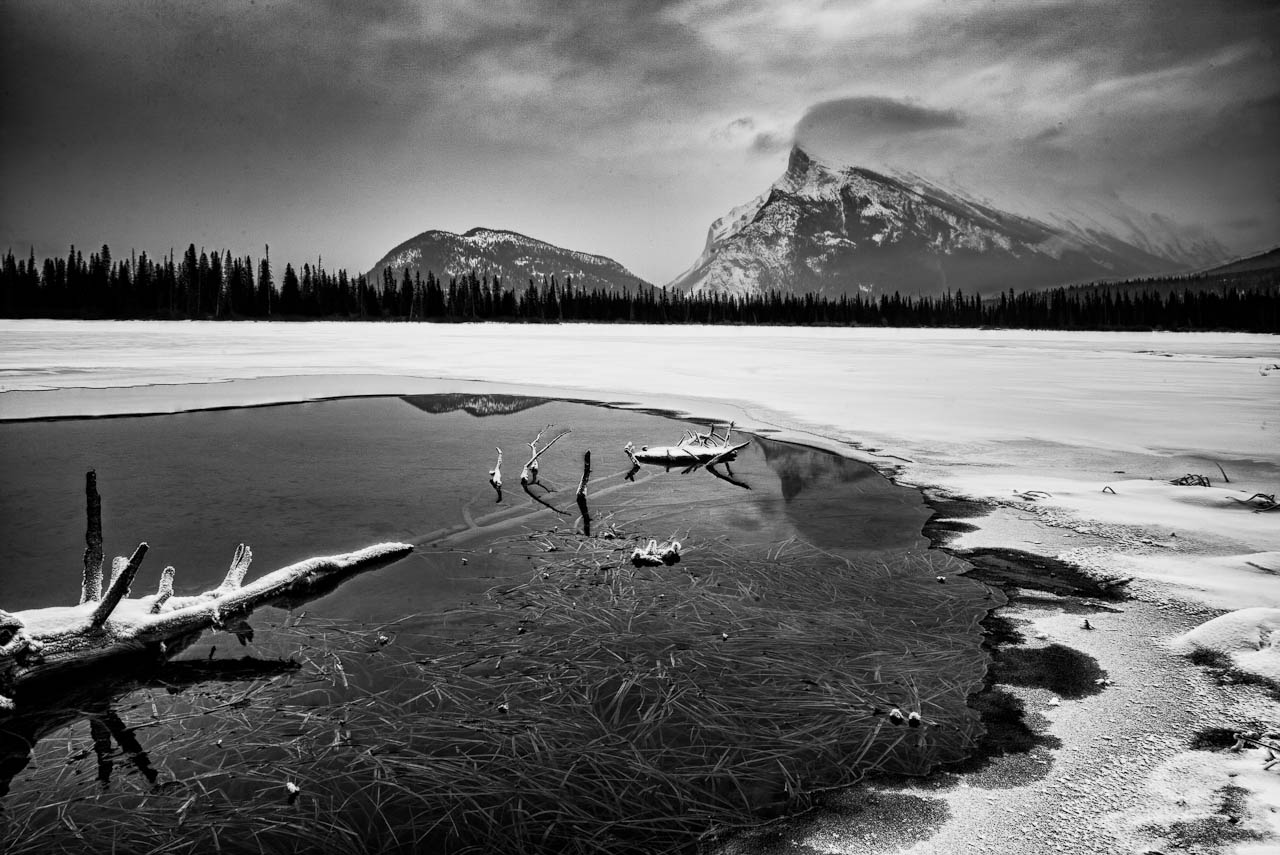 death by landscape and the canadian Poems, death 'death by landscape:  canadian wilderness is associated with a sense of 'northern' masculinity tom thomson was an icon of this idea.